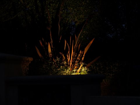 Newbury Park Landscape Lighting Dramatic Lighting