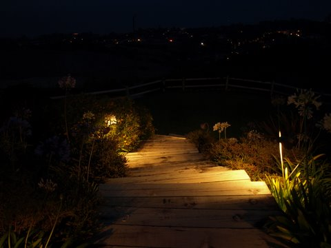 Newbury Park Landscape Lighting Steps